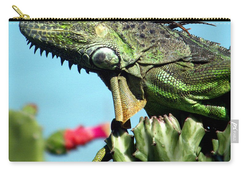 Reptiles Carry-all Pouch featuring the photograph To The Point by Karen Wiles