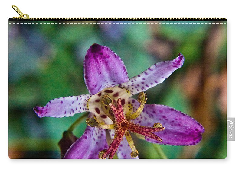 Common Carry-all Pouch featuring the photograph Toad Lilly 1 by Douglas Barnett