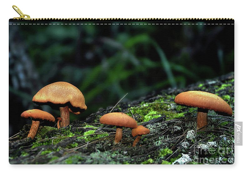 Photography Carry-all Pouch featuring the photograph Toadstool Village by Kaye Menner