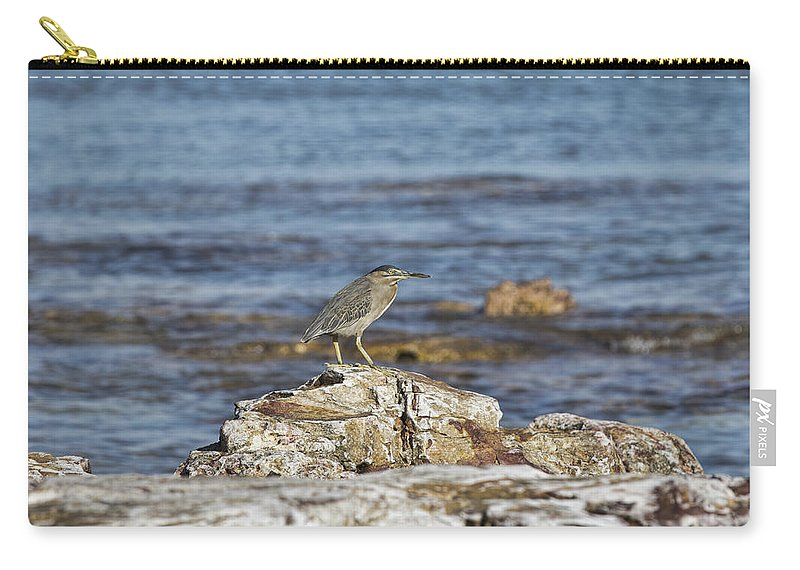 Pied Heron Carry-all Pouch featuring the photograph Top Spot by Douglas Barnard