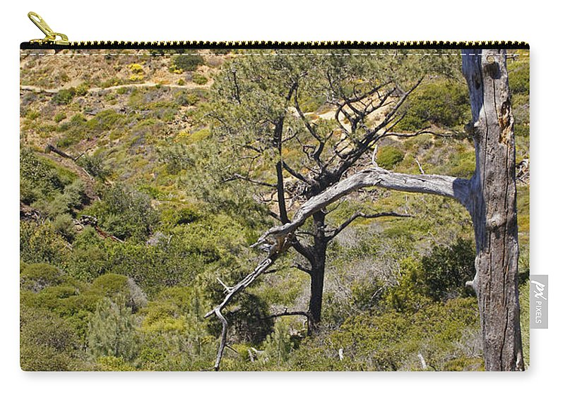 San Diego Carry-all Pouch featuring the photograph Torry Pines Sentinal by Mick Anderson