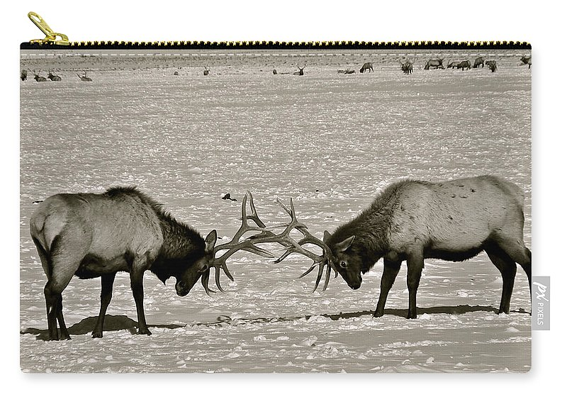 Elk Carry-all Pouch featuring the photograph Touche by Eric Tressler