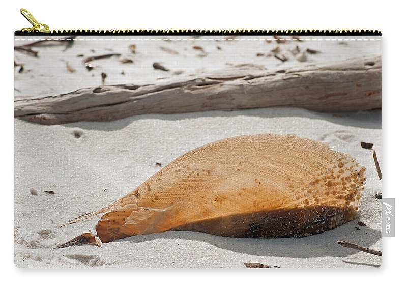 Shell Carry-all Pouch featuring the photograph Transparency by Christine Stonebridge