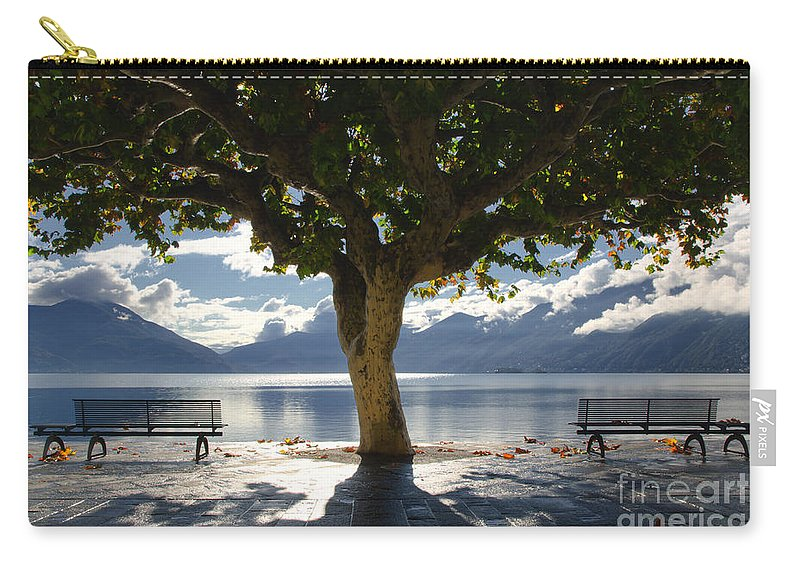 Tree Carry-all Pouch featuring the photograph Tree And Benches by Mats Silvan
