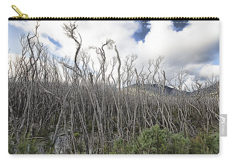 Tidal River Carry-all Pouch featuring the photograph Tree Cemetery by Douglas Barnard