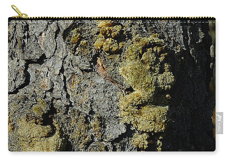 Usa Carry-all Pouch featuring the photograph Tree People by LeeAnn McLaneGoetz McLaneGoetzStudioLLCcom