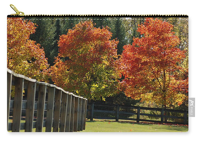 Trees Carry-all Pouch featuring the photograph Trees In Autumn by Optical Playground By MP Ray