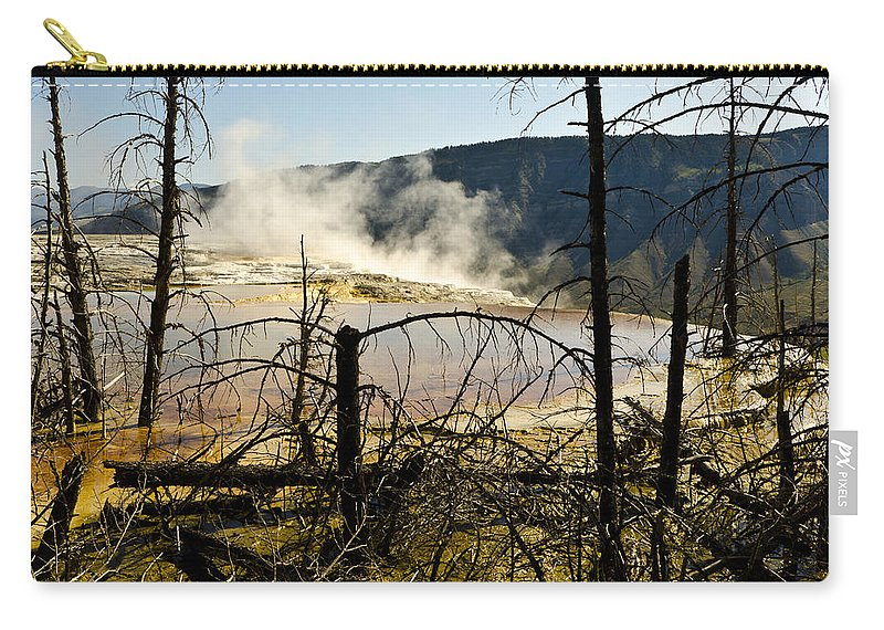Yellowstone National Park Carry-all Pouch featuring the photograph Trees In Nature by Jon Berghoff