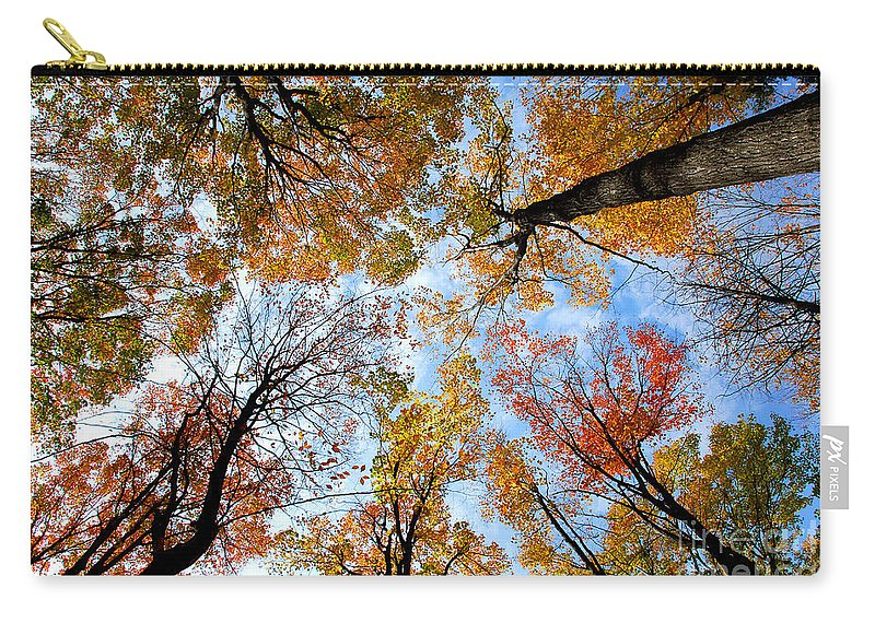 Fall Carry-all Pouch featuring the photograph Treetops by Elena Elisseeva