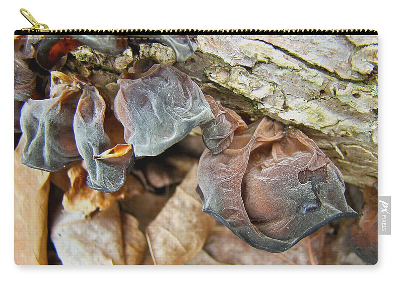 Mushroom Carry-all Pouch featuring the photograph Tremella Mesenterica - Brown Brain Fungus by Mother Nature