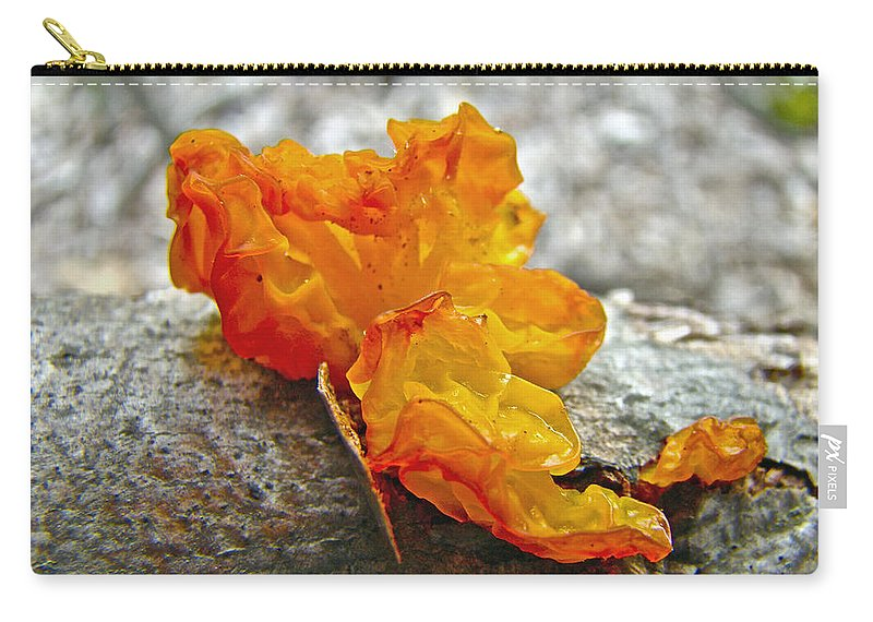 Mushroom Carry-all Pouch featuring the photograph Tremella Mesenterica - Orange Brain Fungus by Mother Nature