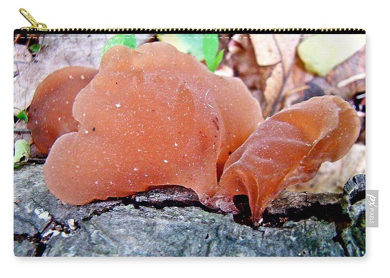 Mushroom Carry-all Pouch featuring the photograph Tremella Mesenterica - Orange Brown Brain Fungus by Mother Nature