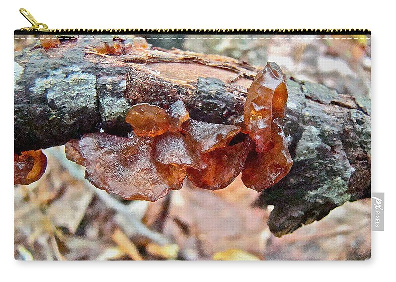 Mushroom Carry-all Pouch featuring the photograph Tremella Mesenterica - Reddish Brown Brain Fungus by Mother Nature