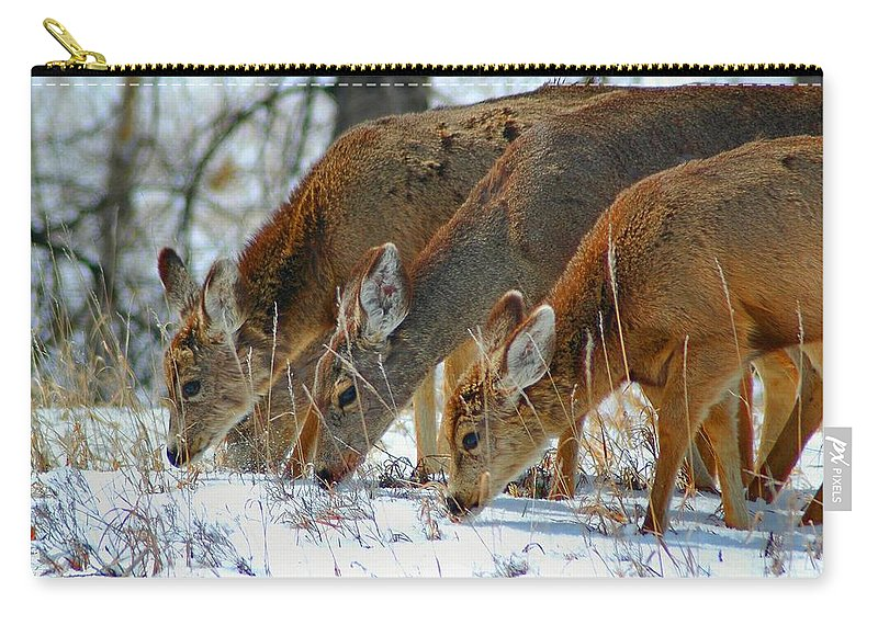 Deer Carry-all Pouch featuring the photograph Triple Play by Lynn Bauer