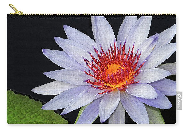 Waterlily Carry-all Pouch featuring the photograph Tropical Waterlily by Dave Mills