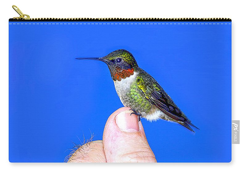 Humming Bird On Thumb Carry-all Pouch featuring the photograph Trust by Randall Branham