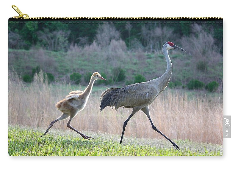 Bird Carry-all Pouch featuring the photograph Trying To Keep Up by Carol Groenen