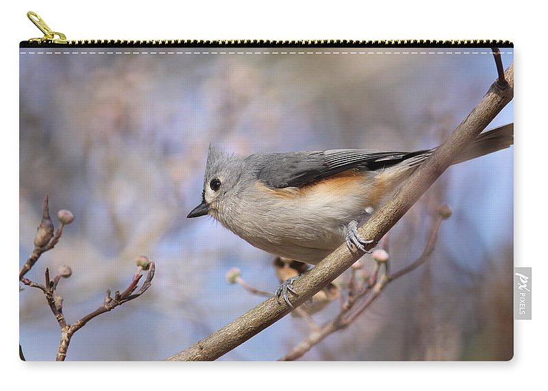 Tufted Titmouse Carry-all Pouch featuring the photograph Tufted Titmouse - On The Slope by Travis Truelove