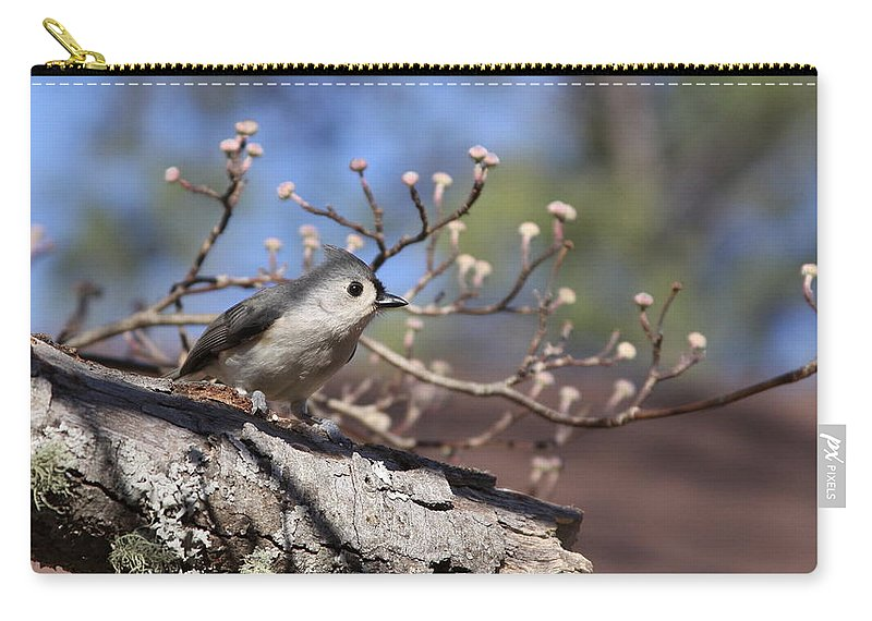 Tufted Titmouse Carry-all Pouch featuring the photograph Tufted Titmouse - Bird - Color In Shadows by Travis Truelove
