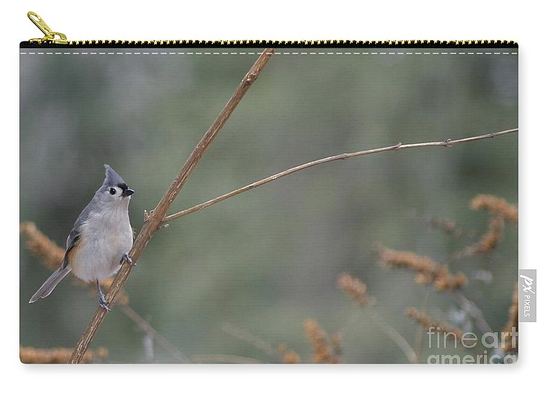 Bird Carry-all Pouch featuring the photograph Tufted Titmouse by Living Color Photography Lorraine Lynch