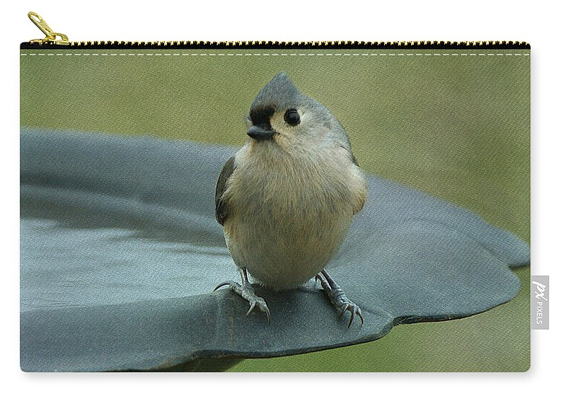 Bird Carry-all Pouch featuring the photograph Tufted Titmouse by Sandy Keeton
