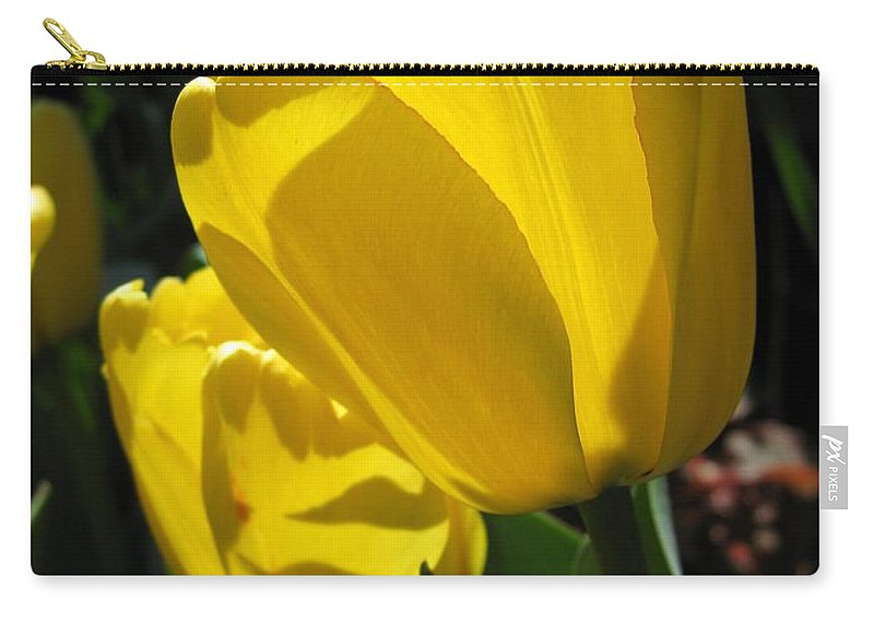 Tulip Carry-all Pouch featuring the photograph Tulip Named Big Smile by J McCombie