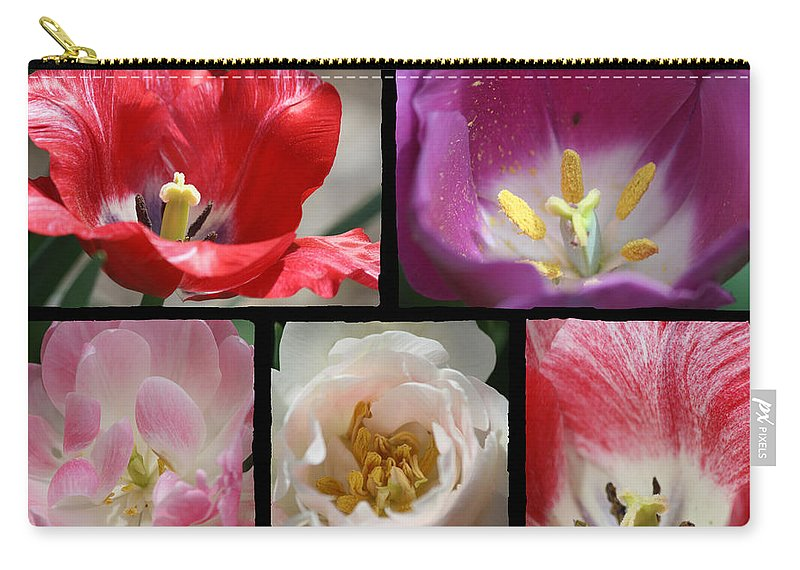 Tulip Carry-all Pouch featuring the photograph Tulip Sampler by Teresa Mucha