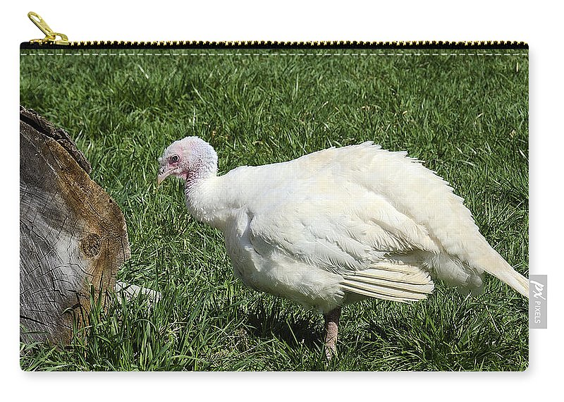 Usa Carry-all Pouch featuring the photograph Turkey And The Chopping Block by LeeAnn McLaneGoetz McLaneGoetzStudioLLCcom
