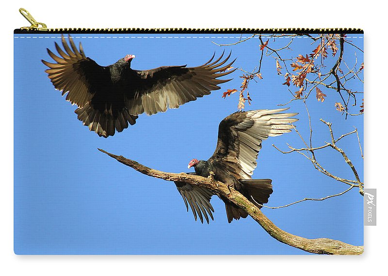 Turkey Vulture Carry-all Pouch featuring the photograph Turkey Vultures by Doris Potter