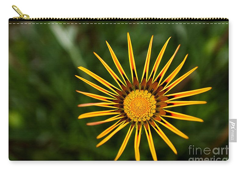 Flower Carry-all Pouch featuring the photograph Twinkle Twinkle by Syed Aqueel