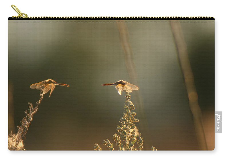Dragonflies Carry-all Pouch featuring the photograph Two Is Better by Andrea Lawrence