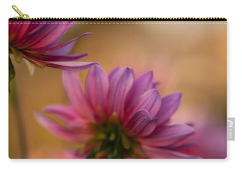 Dahlia Carry-all Pouch featuring the photograph Two Towards The Light by Mike Reid