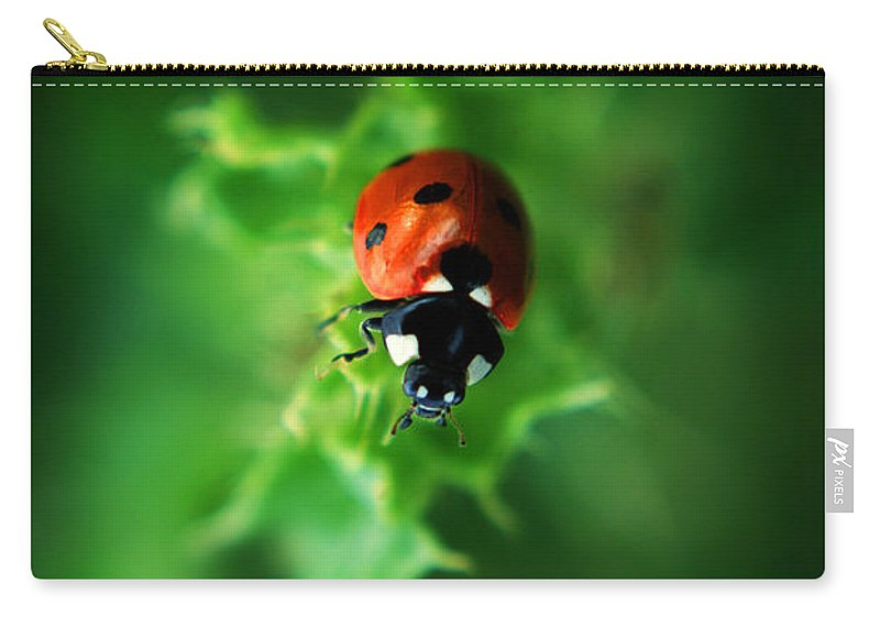 Yhun Suarez Carry-all Pouch featuring the photograph Ultra Electro Magnetic Single Ladybug by Yhun Suarez