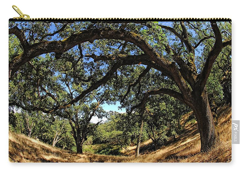California Carry-all Pouch featuring the photograph Under The Oak Canopy by Donna Blackhall