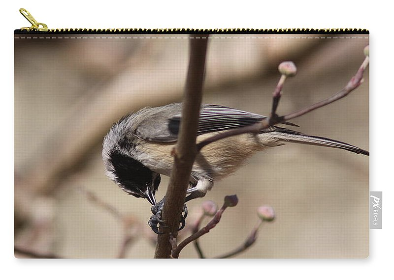 Carry-all Pouch featuring the photograph Unusual Angle by Travis Truelove