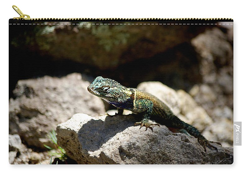 Photograph Carry-all Pouch featuring the photograph Up And Over by Vicki Pelham