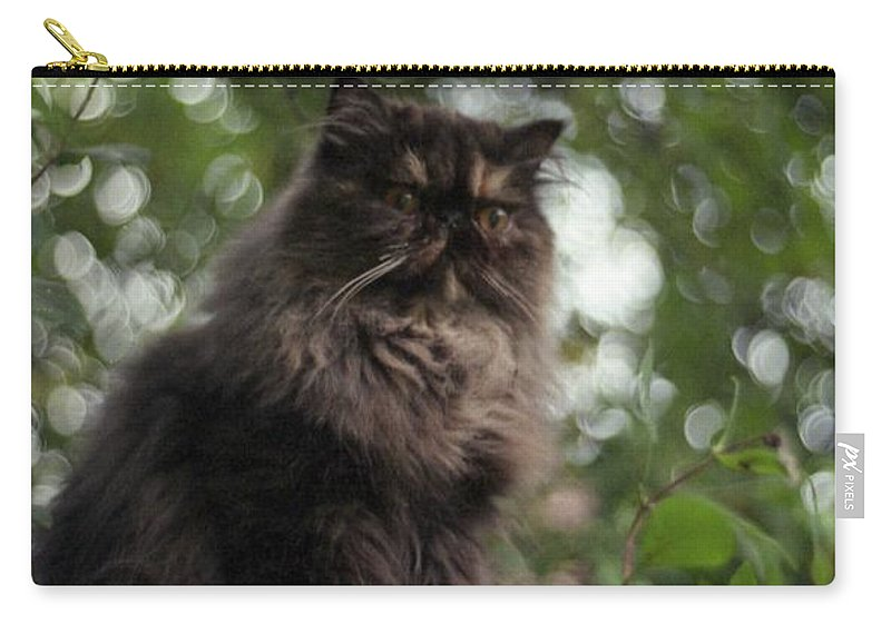 Pet Carry-all Pouch featuring the photograph Vantage Point by John Chatterley