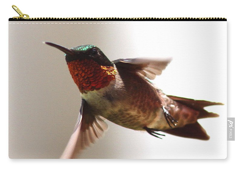 Hummingbird Carry-all Pouch featuring the photograph Varoooom by Travis Truelove