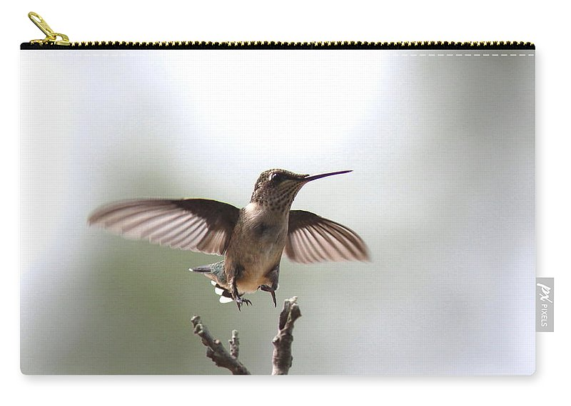 Hummingbird Carry-all Pouch featuring the photograph Vertical Takeoff by Travis Truelove