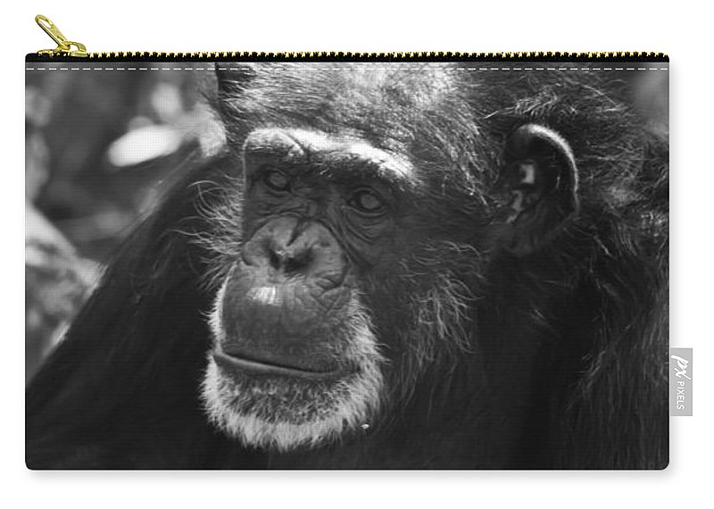 Village Carry-all Pouch featuring the photograph Village Elder Black And White by Scott Hervieux