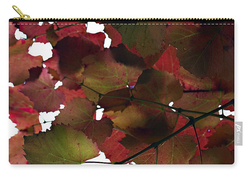 Vine Leaves Carry-all Pouch featuring the photograph Vine Leaves by Douglas Barnard