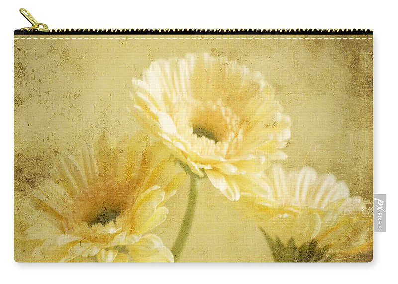 Gerber Carry-all Pouch featuring the photograph Vintage Vanilla by Traci Cottingham