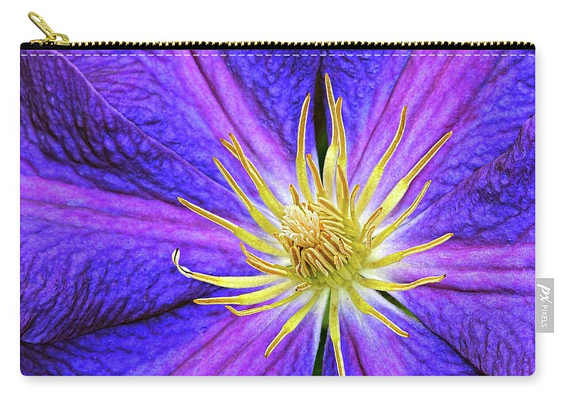Clematis Carry-all Pouch featuring the photograph Violet Clematis by Dave Mills