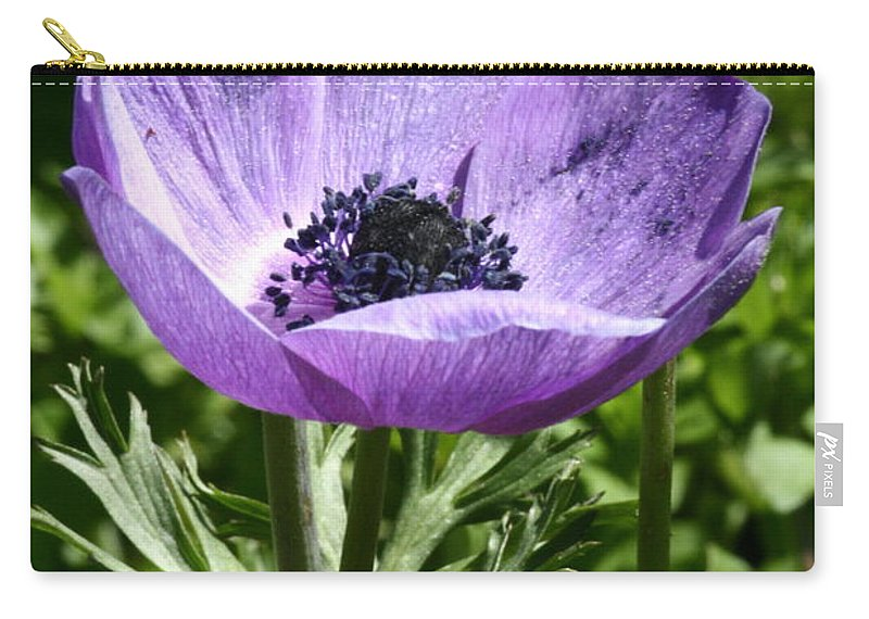 Violet Carry-all Pouch featuring the photograph Violet Peace by Laddie Halupa