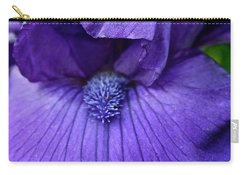 Plant Carry-all Pouch featuring the photograph Vision In Violet by Susan Herber
