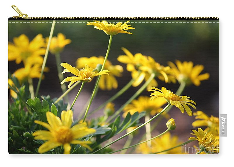 Sunshine Carry-all Pouch featuring the photograph Waking Up To Sunshine by Carol Groenen