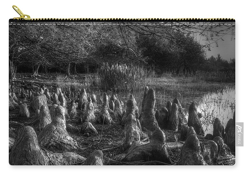 Cyprus Carry-all Pouch featuring the photograph Walrus Beach by Debra and Dave Vanderlaan