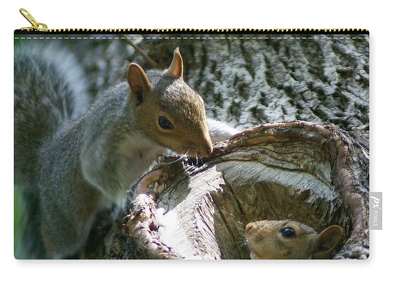 Squirrel Carry-all Pouch featuring the photograph Want To Come Out And Play by Ben Upham III