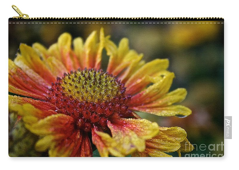 Flower Carry-all Pouch featuring the photograph Waterlogged Arizona Apricot by Susan Herber
