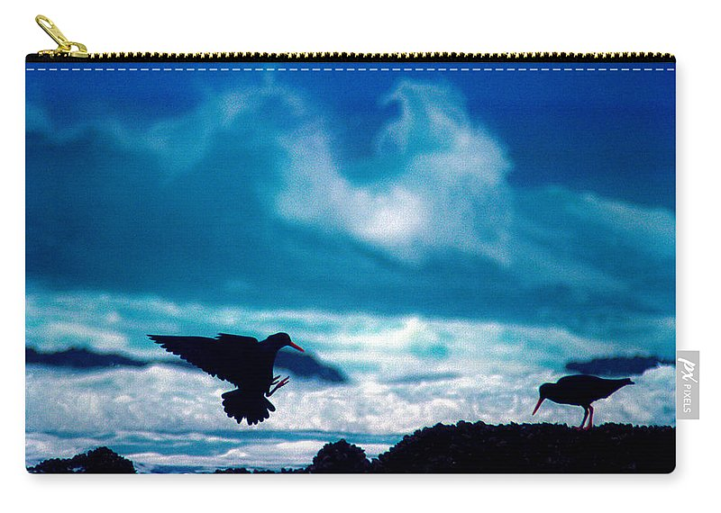 African Black Oystercatcher Carry-all Pouch featuring the photograph Wavedance by Alistair Lyne